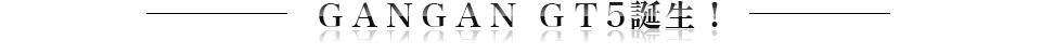 GANGAN GT5誕生!